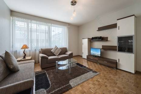 Agreeable Furnished Apartment, in Geneva Center for a Flexible Long Term Period