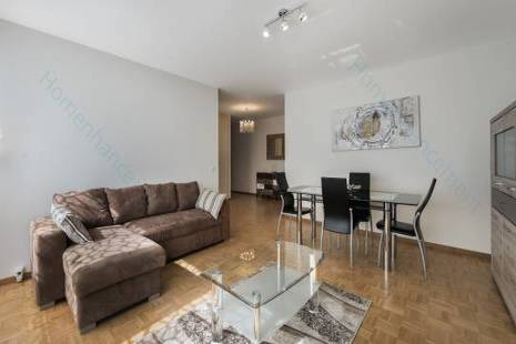 Modern and Spacious Furnished Apartment, in Geneva Center