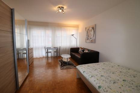 COMFORTABLE AND FULLY FURNISHED APARTMENT, in Champel