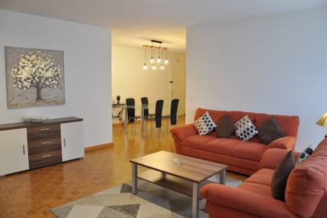 Functional Fully Furnished Apartment near Geneva Center