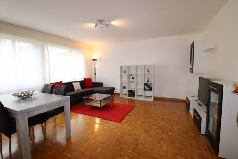 Fully equipped 1 Bedroom apartment in Champel